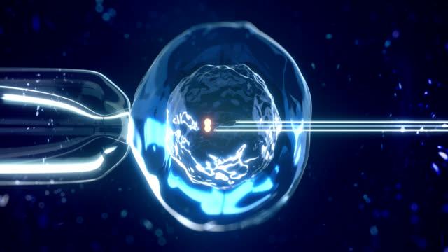 stockvideo's en b-roll-footage met in vitro fertilisatie - kunstmatige inseminatie