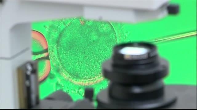 stockvideo's en b-roll-footage met in vitro procedure on screen - kunstmatige inseminatie