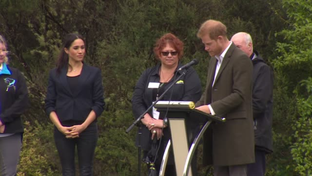 vidéos et rushes de including prince harry making speech during ceremony marking dedication of 20 hectare section of native bush on riding club land to the queen's... - canopy tour