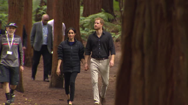 including royal couple walk hand and hand through redwood forest in whakarewarewa - prince harry stock videos & royalty-free footage