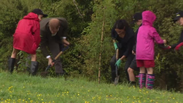 vidéos et rushes de including the royal couple planting native trees during ceremony marking dedication of 20 hectare section of native bush on riding club land to the... - canopy tour
