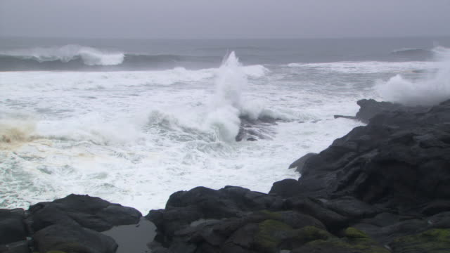 incoming tide on rocks - tide stock videos & royalty-free footage