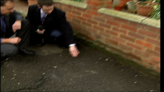 vidéos et rushes de increase in pavedover gardens causes subsidence lee jones interview sot jones showing a tree trunk with bulbous roots cracking the pavement zoom in... - bare tree