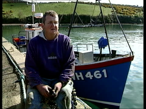 stockvideo's en b-roll-footage met independence party: west country strength; england devon salcombe ext dawn breaking over boats moored in river estuary fishing boat along cms sharks... - kerktoren