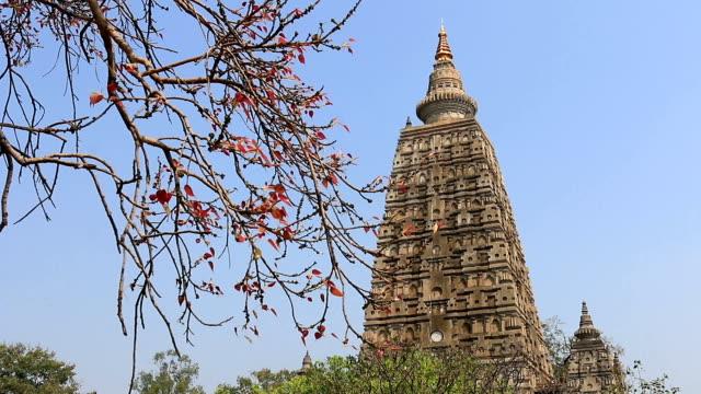 vídeos y material grabado en eventos de stock de india, mahabodhy temple - budismo