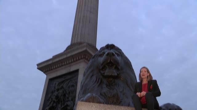 india unveil world's biggest statue; uk, london, trafalgar square; anna kim interview / nelson's column. england: london: trafalgar square: ext... - トラファルガー広場点の映像素材/bロール