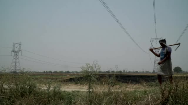 exit polls suggest surprise win for narendra modi india uttar pradesh market tractor cows rice farmer farming radhe shyam interview swati yadav... - hay truck stock videos & royalty-free footage
