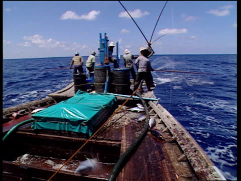 indian fishermen on boat fish for tuna and fling fish into middle of boat, indian ocean - indian ocean stock videos & royalty-free footage