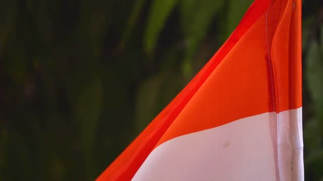 indian flag - indian politics stock videos & royalty-free footage