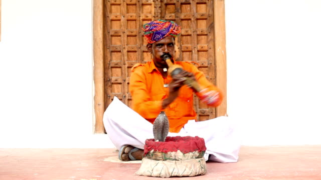 indian snake charmer - snake stock videos & royalty-free footage