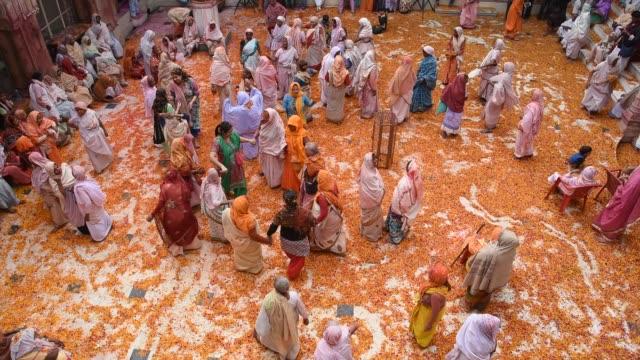 stockvideo's en b-roll-footage met indian widow celebrating holi, vrindavan, india. - holi phagwa