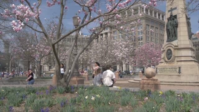 vídeos de stock, filmes e b-roll de indiana plaza and spring blossom on pennsylvania avenue, washington dc, united states of america, north america - pennsylvania avenue
