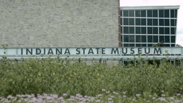 indianapolis state museum - prehistoric art stock videos & royalty-free footage
