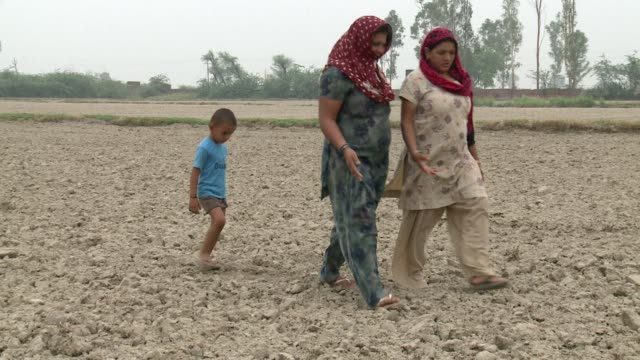 vídeos y material grabado en eventos de stock de india's monsoon rains that lash the country each summer arrived late and have been feeble this year, leading to hardship for hundreds of millions of... - sparks