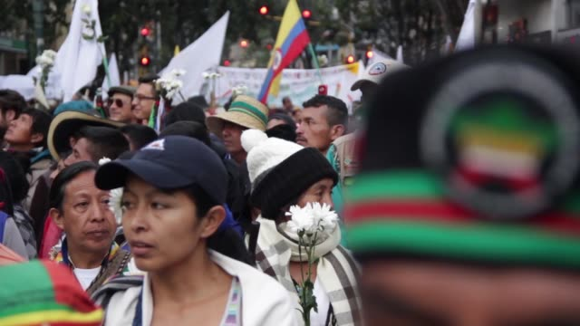 indigenous activists marched through the capital bogota on 13 october 2016 more than 40 thousand people from differents parts of colombia arrived to... - indigenous culture stock videos & royalty-free footage