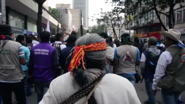 vídeos de stock e filmes b-roll de indigenous activists marched through the capital bogota on 13 october 2016. more than 40 thousand people from differents parts of colombia arrived to... - cultura indígena