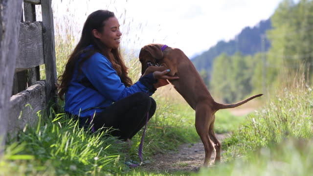 indigenous canadian woman playing with her dog - indigenous peoples of the americas stock videos & royalty-free footage