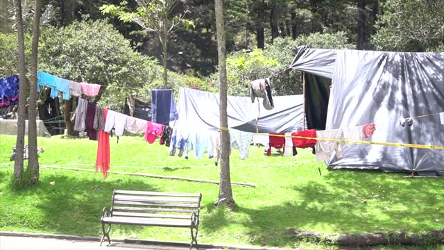 COL: Indigenous Community Camping In a Park In Bogota