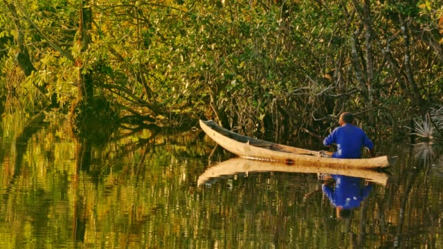 indigenous culture: pemón fishing on a curiara in the carrao river at ucaima - indigenous peoples of the americas stock videos & royalty-free footage