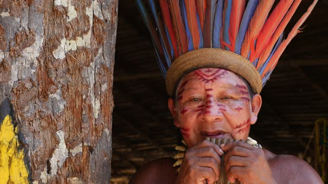 indigenous man playing bamboo flute - one senior man only stock videos & royalty-free footage