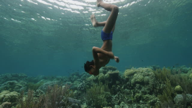 indonesia, boy dives down to reef - tropical fish stock videos & royalty-free footage