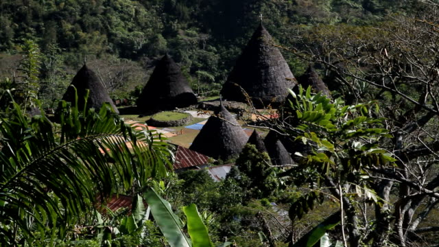 indonesia, flores island - フロレス点の映像素材/bロール