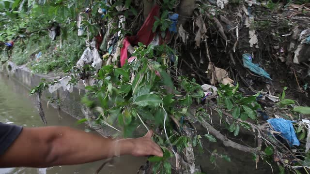 indonesian environmental activists collect plastic waste along the deli river basin during world environment day on june 5, 2021 in medan, indonesia.... - albert damanik stock videos & royalty-free footage