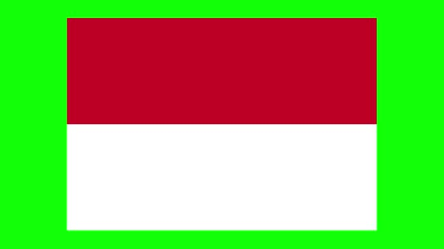 vídeos de stock e filmes b-roll de indonesian flag animation on green screen background, chroma key, loopable - bandeira indonésia