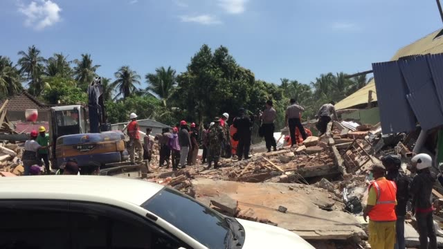 indonesian police with k9 dog looking for victims at a collapsed house following an earthquake in tanjung on august 8 2018 in lombok island indonesia... - indonesia earthquake stock videos & royalty-free footage