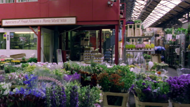pan indoor flower market with buckets of flowers on floor, customers + workers / dublin, ireland - centro per il giardinaggio video stock e b–roll