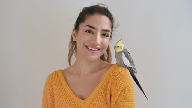 indoor portrait of cheerful young woman and pet cockatiel - v neck stock videos & royalty-free footage