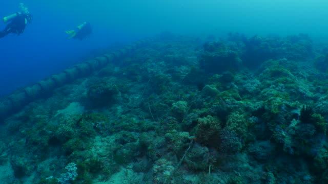 industrial pipe built in coral reef - mar stock videos & royalty-free footage