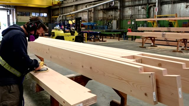 industrial timber manufacturing facility - timber yard stock videos & royalty-free footage