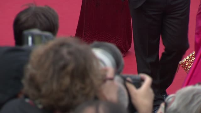 ines de la fressange, leila bekhti, and jane fonda at madagascar 3 europe's most wanted premiere: 65th cannes film festival on may 18, 2012 in... - roberto cavalli designer label stock videos & royalty-free footage