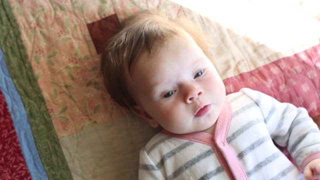 a infant baby lying on top of a carpet inside - one baby boy only stock videos & royalty-free footage