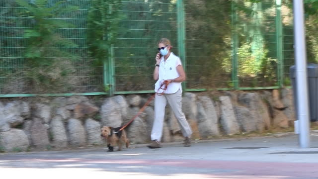 infanta elena speaks on the phone while walking her dog - pets stock videos & royalty-free footage