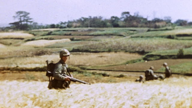infantry advancing through field of tall grain and open country during wwii battle of okinawa / japan - 1945 stock videos & royalty-free footage