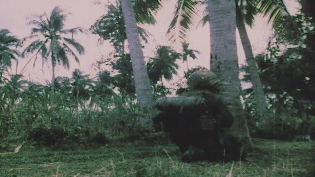 infantry in firefight shooting m16s from behind palm trees running across open terrain and firing behind large tree / tay ninh vietnam - battle stock videos & royalty-free footage