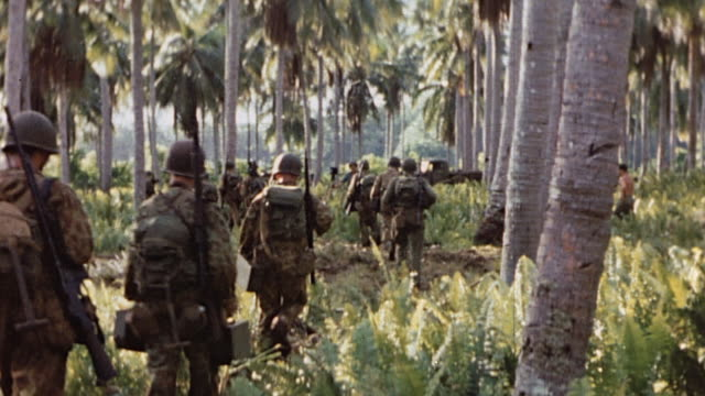 Infantry marching through palm trees and brush