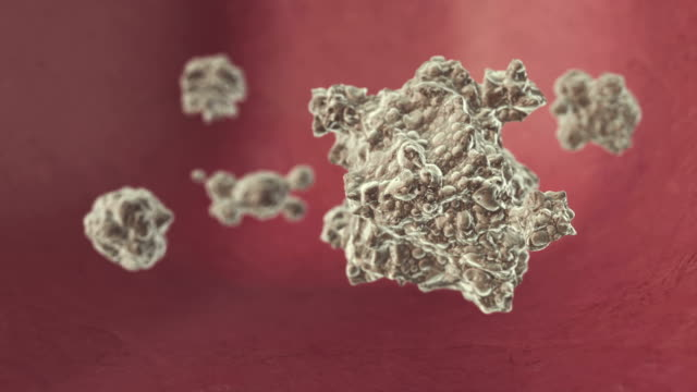 infected cells - lymphocyte stock videos and b-roll footage