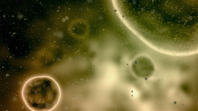 infected cells - microscope stock videos & royalty-free footage