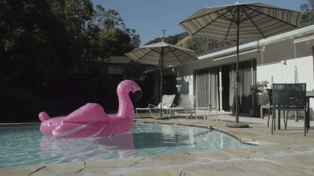 WS Inflatable pink flamingo alone in pool