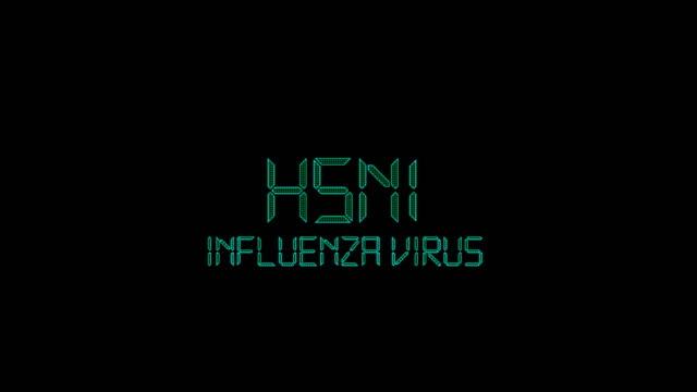 vídeos de stock e filmes b-roll de h5n1 influenza virus title animation - epidemiologia
