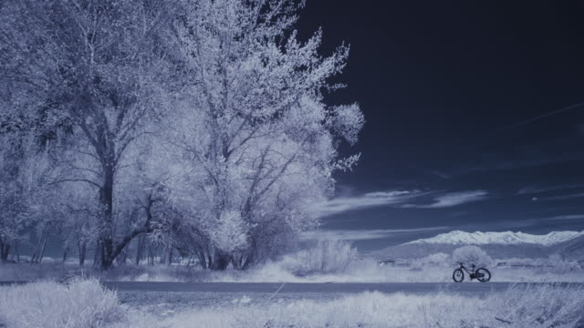 vidéos et rushes de infrared time lapse of person riding bicycle in park near trees / lehi, utah, united states - saison