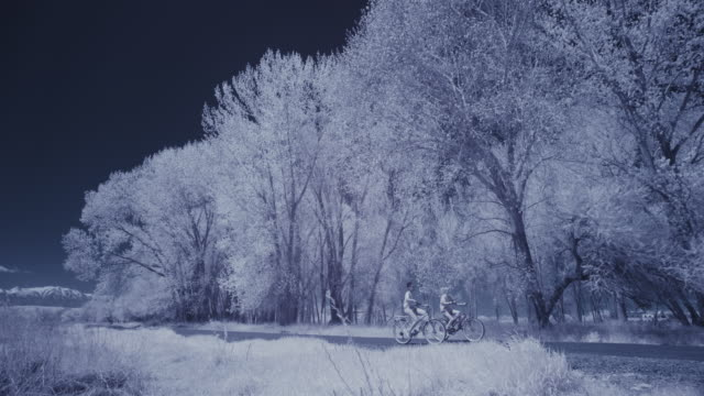 infrared view of people riding bicycles in park near trees / lehi, utah, united states - lehi stock-videos und b-roll-filmmaterial