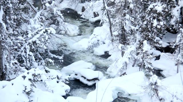 inglis falls in winter - ナイアガラ滝点の映像素材/bロール