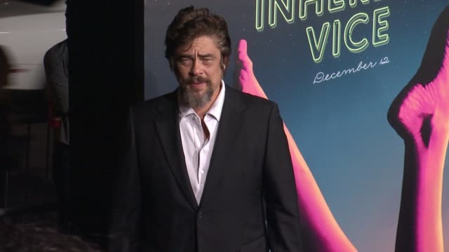 clean inherent vice los angeles premiere at tcl chinese theatre imax on december 10 2014 in hollywood california - kopfbedeckung stock-videos und b-roll-filmmaterial
