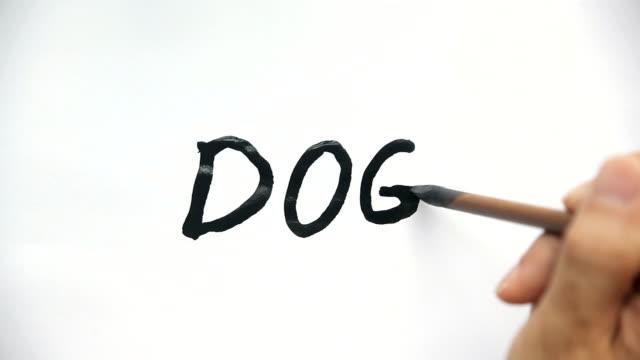 vidéos et rushes de ink brush writing dog - pinceau