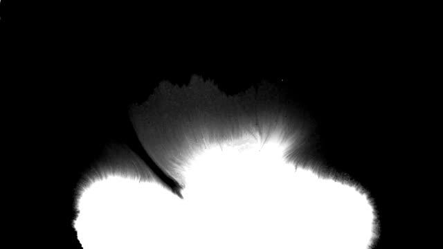 vidéos et rushes de spreads de flux d'encre sur la surface - touche de couleur
