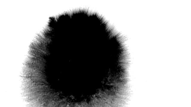 美しいインクの流れと流れのインクセット - 水彩点の映像素材/bロール